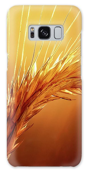 Close Up Galaxy Case - Wheat Close-up by Johan Swanepoel