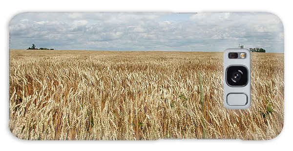 Wheat Farms Galaxy Case