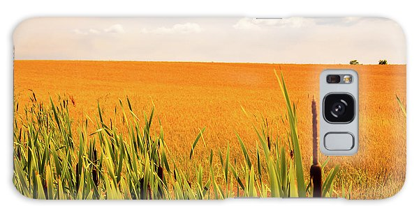 Wheat Field  Galaxy Case