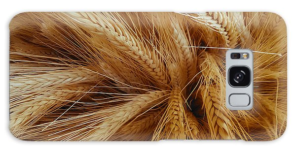 Wheat In The Sunset Galaxy Case
