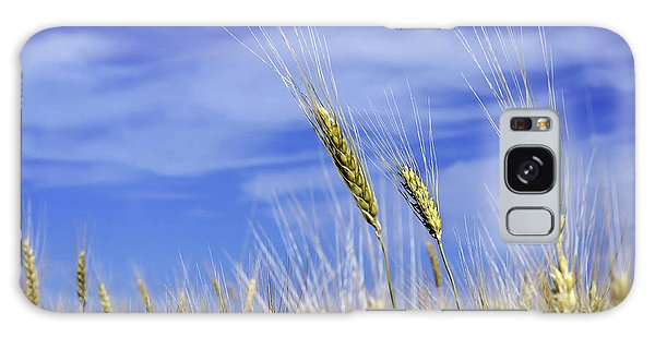 Wheat Trio Galaxy Case by Keith Armstrong