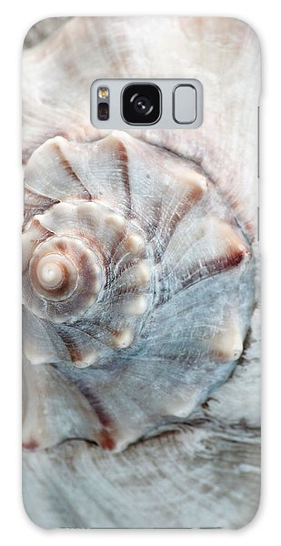Whelk Galaxy Case