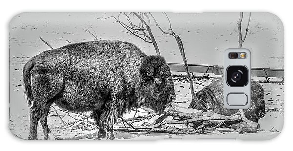 Where The Buffalo Rest Galaxy Case