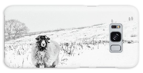 Sheep Galaxy S8 Case - Which Way Is South? by Janet Burdon