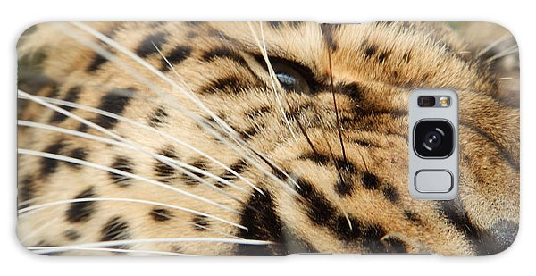 Whiskers  Galaxy Case by Gary Bridger