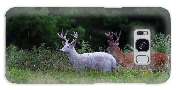 White And Brown Bucks Galaxy Case