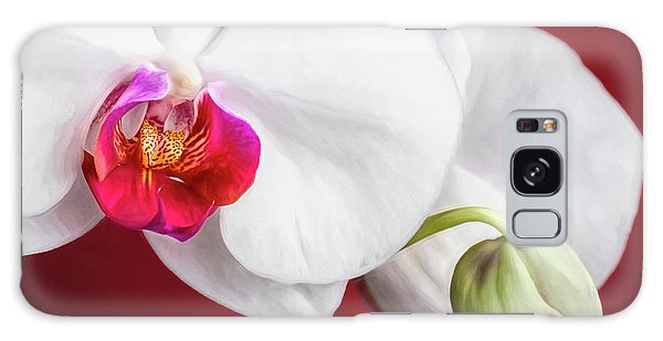 Orchidaceae Galaxy Case - White And Red Orchids by Tom Mc Nemar