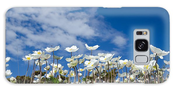 White Anemones At Blue Sky Galaxy Case