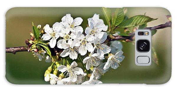 White Apple Blossoms Galaxy Case