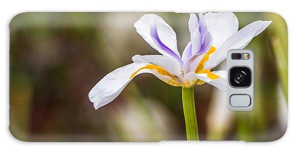 White Beardless Iris Galaxy Case