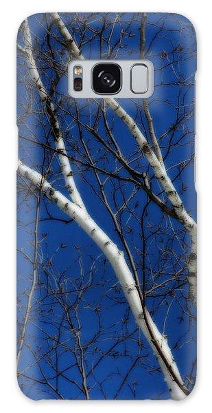 White Birch Blue Sky Galaxy Case