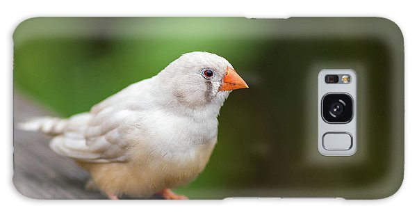 White Bird Standing On Deck Galaxy Case