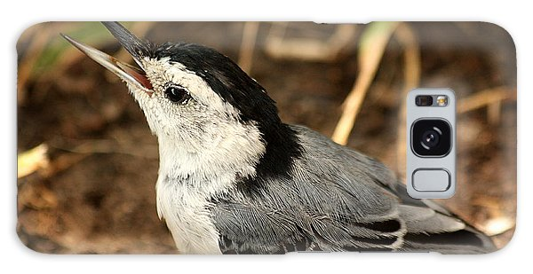 White Breasted Nuthatch 2 Galaxy Case