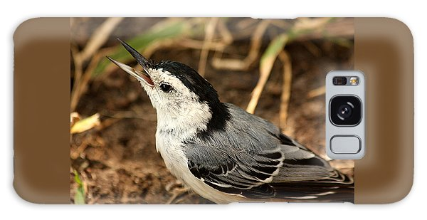 White Breasted Nuthatch 2 Galaxy Case by Sheila Brown