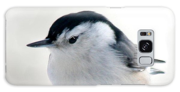 White Breasted Nuthatch Galaxy Case by Diane Merkle
