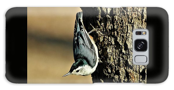 White-breasted Nuthatch On Tree Galaxy Case by Sheila Brown