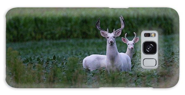 White Bucks Galaxy Case