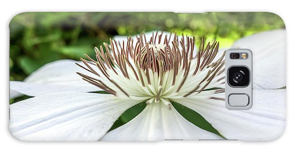 White Clematis Flower Garden 50146 Galaxy Case