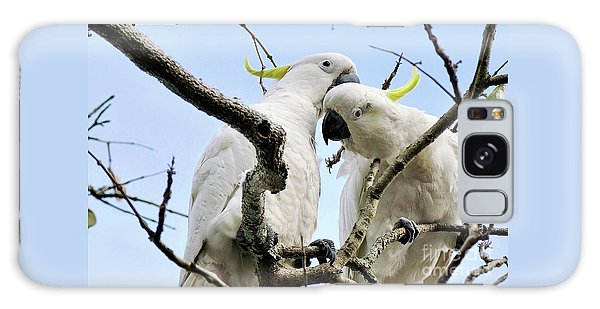 White Cockatoos Galaxy Case by Kaye Menner