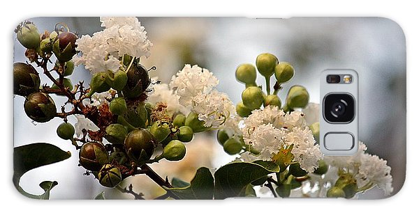 White Crape Myrtle- Fine Art Galaxy Case