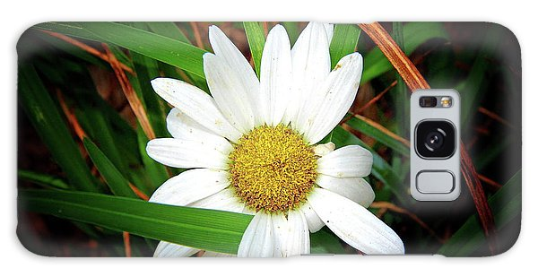 White Daisy Galaxy Case