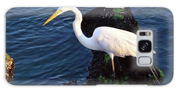 White Egret At Sunrise - Barnegat Bay Nj  Galaxy Case