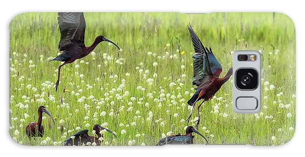 White-faced Ibis Rising, No. 1 Galaxy Case