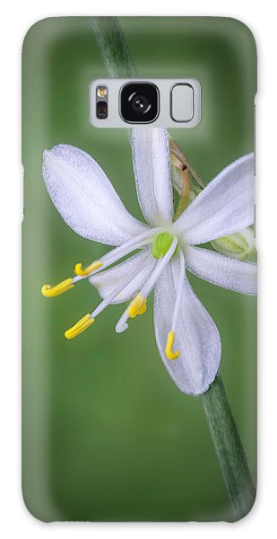 White Flower Galaxy Case
