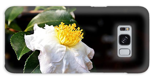 White Flower-so Silky And White Galaxy Case