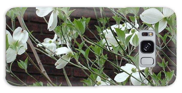 White Flowering Dogwood Galaxy Case