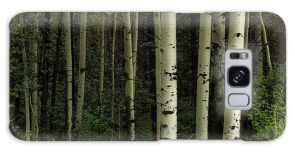 Galaxy Case featuring the photograph White Forest by James BO Insogna