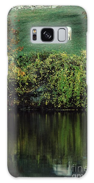 White Horse Reflected In Autumn Pond Galaxy Case