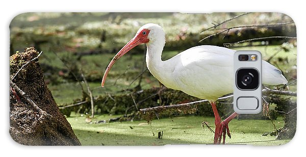 White Ibis Galaxy Case