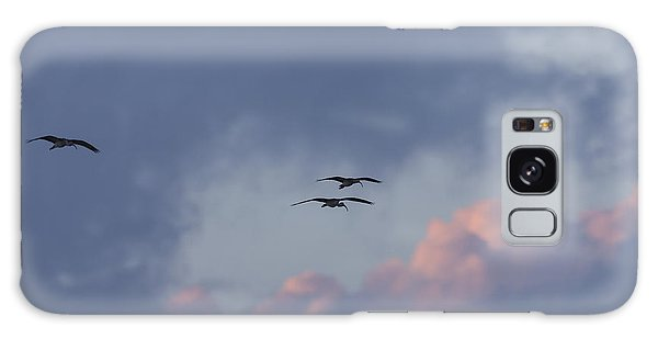 White Ibis In Flight At Sunset Galaxy Case