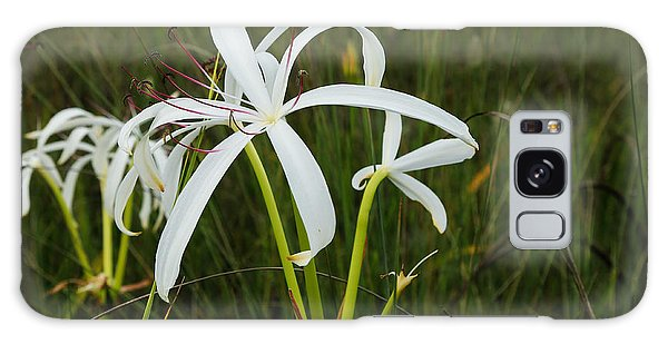White Lilies In Bloom Galaxy Case by Christopher L Thomley