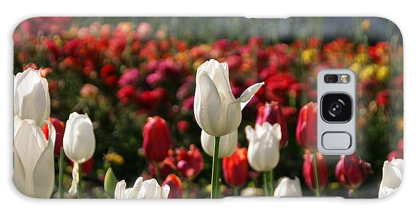 White Lit Tulips Galaxy Case
