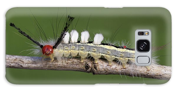 White-marked Tussock Moth 2 Galaxy Case by David Lester