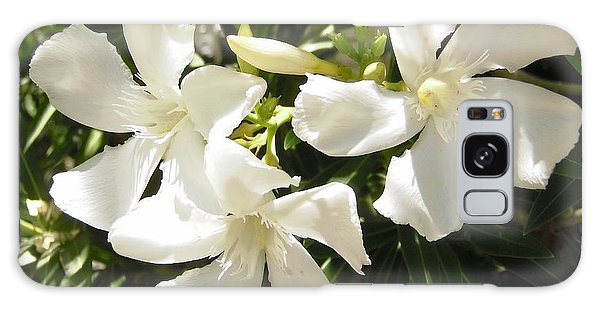 White Oleander Flowers Galaxy Case