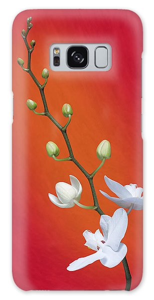 Orchid Galaxy Case - White Orchid Buds On Red by Tom Mc Nemar