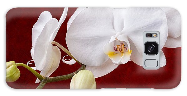 Orchidaceae Galaxy Case - White Orchid Closeup by Tom Mc Nemar