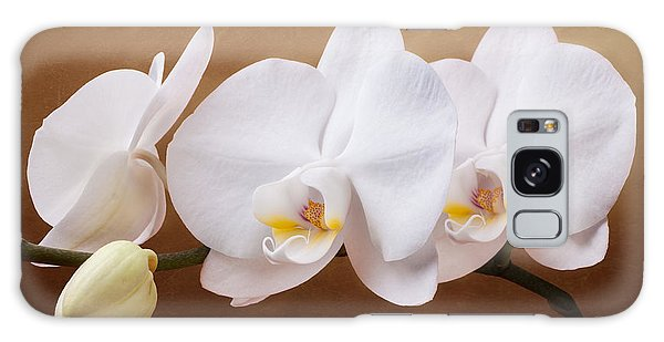 Orchidaceae Galaxy Case - White Orchid Flowers And Bud by Tom Mc Nemar