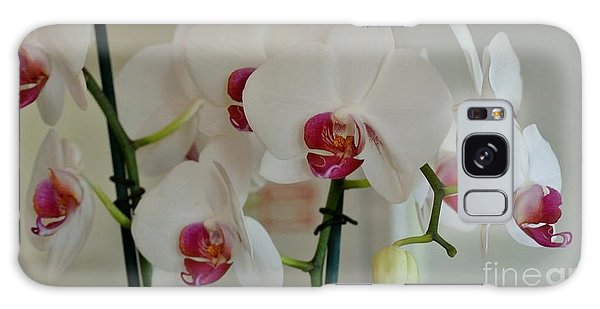 White Orchid Mothers Day Galaxy Case by Marsha Heiken