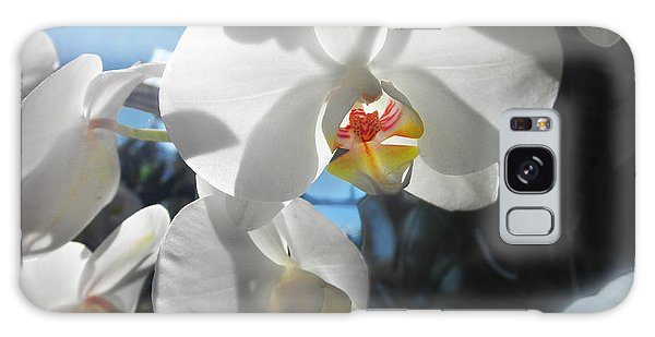 White Orchids Galaxy Case by David Klaboe