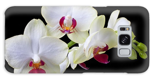 Orchidaceae Galaxy Case - White Orchids by Garry Gay