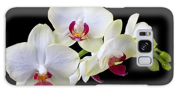 Orchid Galaxy Case - White Orchids by Garry Gay