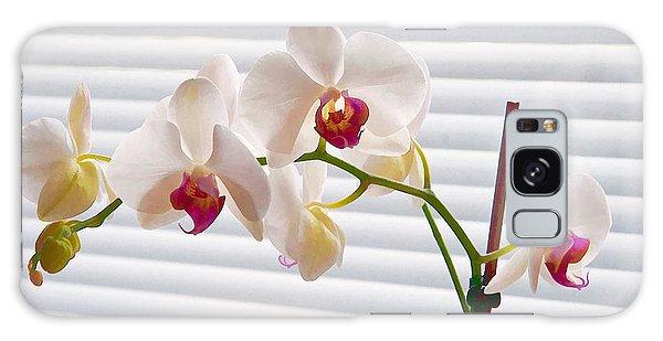 White Orchids On White Galaxy Case by Ari Salmela