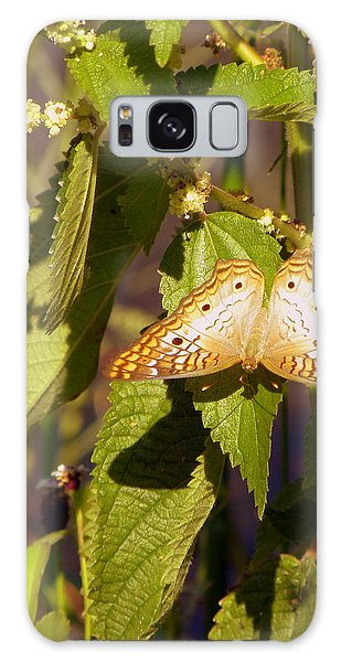 White Peacock Butterfly Galaxy Case by Terri Mills