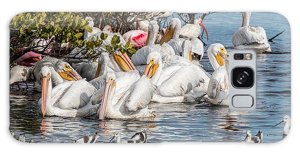 White Pelicans And Others Galaxy Case