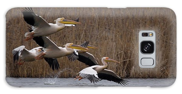 White Pelicans In Flight Over Lake Galaxy Case