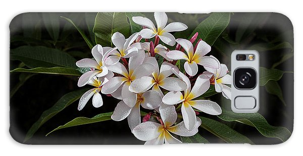 White Plumerias In Bloom Galaxy Case